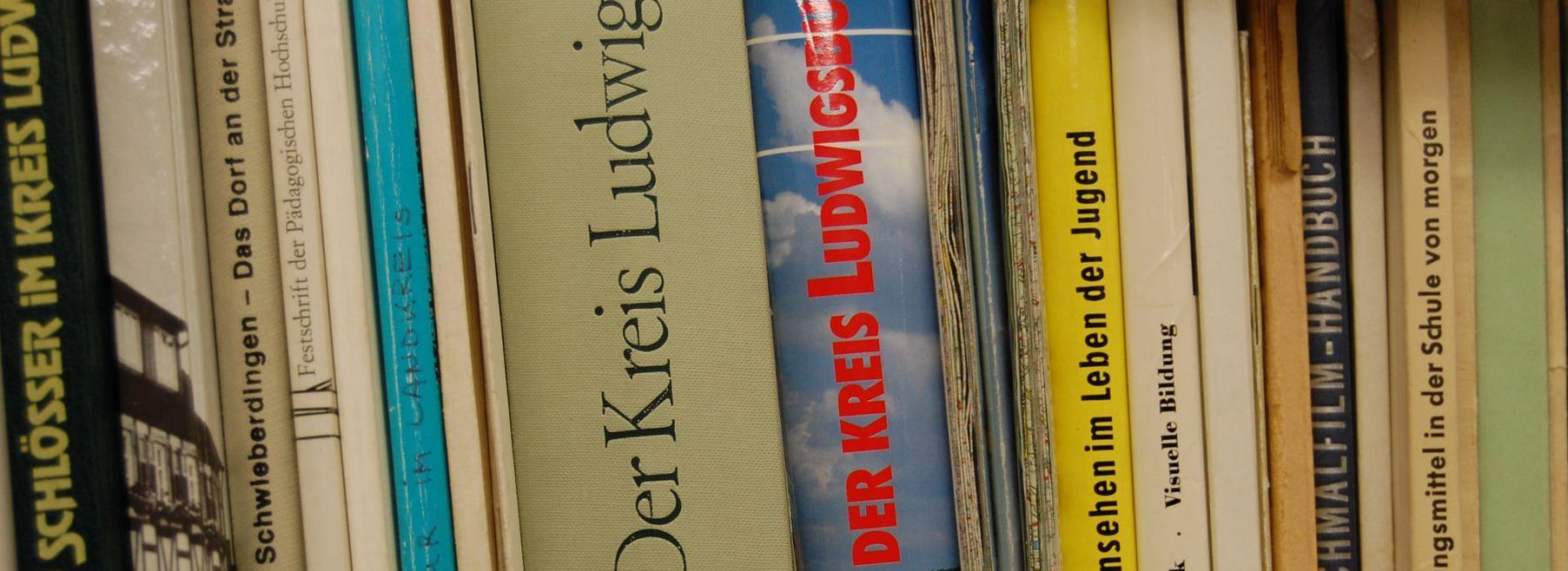 Buchrücken von Büchern in einem Regal DSC_0001.JPG