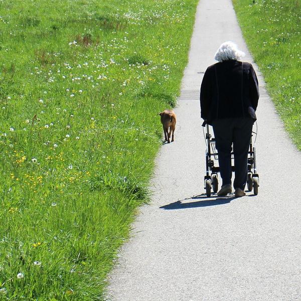 Frau mit Rollator auf einem Feldweg Rollator_Feature.jpg