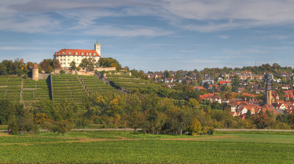 Schloss Kaltenstein