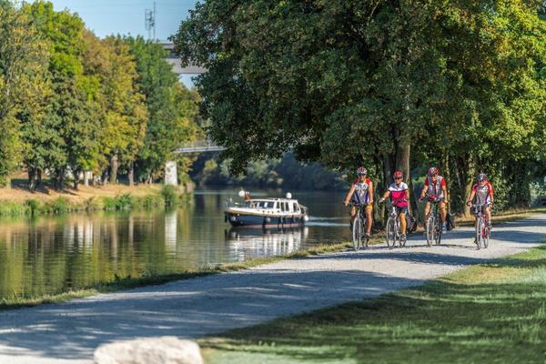 Radfahrer am Neckar / Foto: Jan Bürgermeister