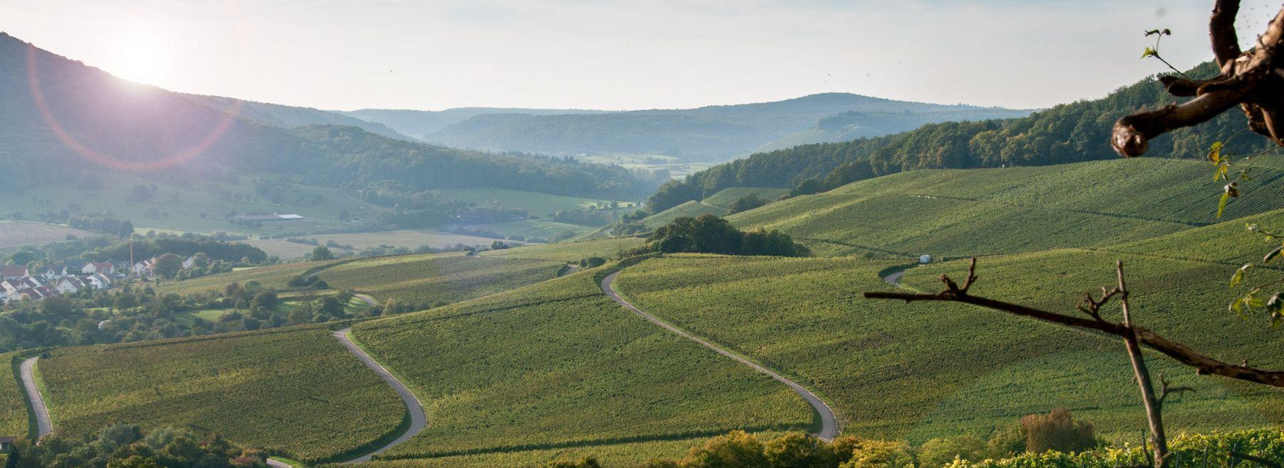 Panorama Stromberg Stromberg.jpg