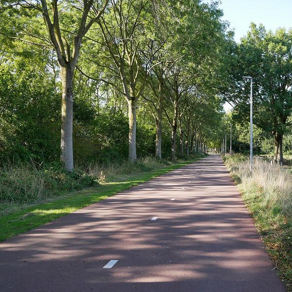 Radschnellweg in den Niederlanden