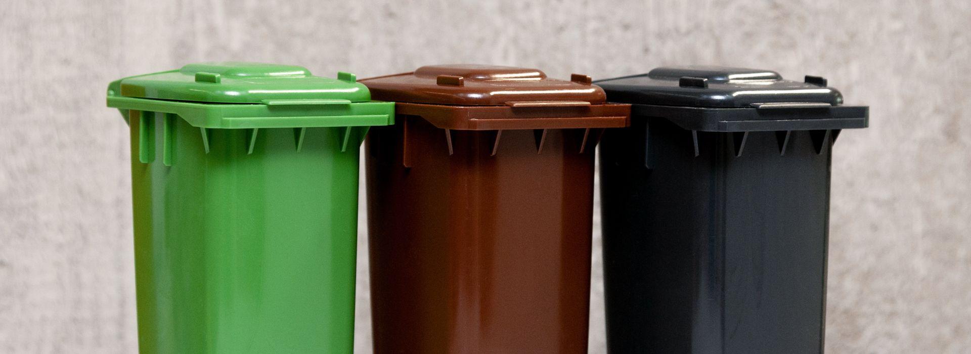 grüne, braune und schwarze Mülltonnen nebeneinander 20190129_Homepage_AVL_49_a_Druck.jpg