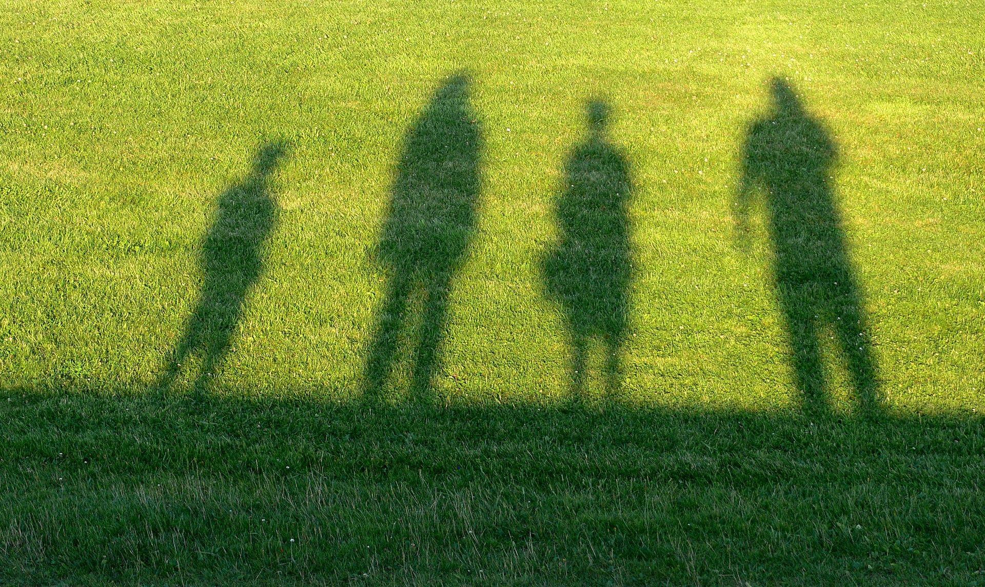 Schatten einer Familie auf einer Wiese Familie_Schema.jpg