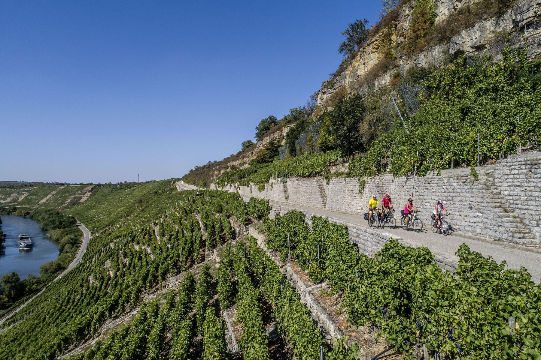 Weg durch Steilhanglage eines Weinbergs